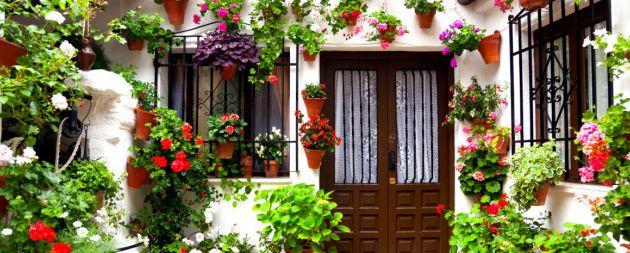 Patios de Córdoba, espectáculo de color