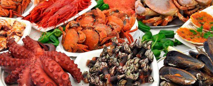 Galicia Gourmet