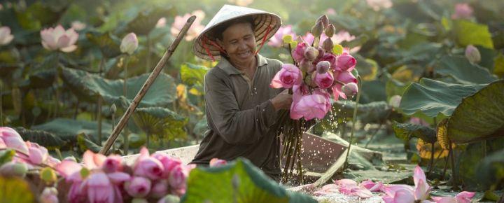 Un paseo por Vietnam, 10 días