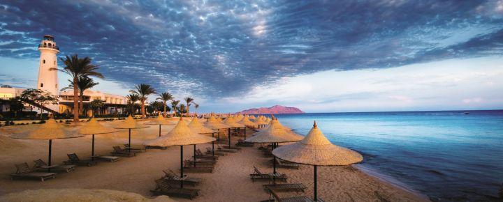 El Mar Rojo: Sharm el Sheik, 8 días