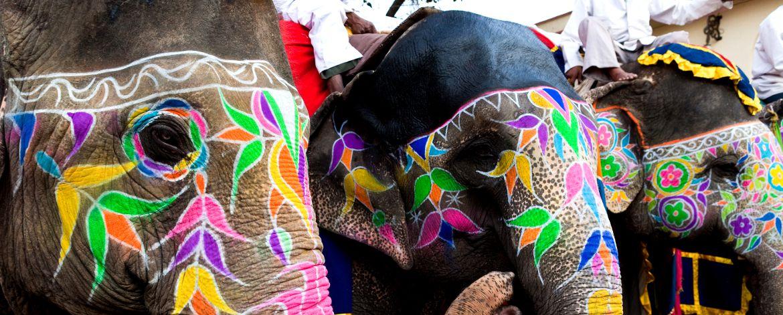 Vacaciones india ex tica - India exotica ...